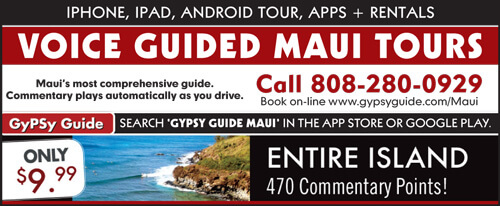 Guided Tour of Maui