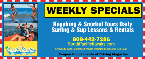 Kayak, surf, SUP tours and lessons