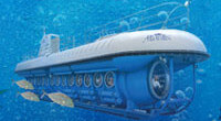 Atlantis Submarines Combo Save $108