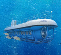 Atlantis Submarines Couple Save $108
