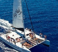 Alii Nui Sailing Charters $39 Kids Whale Watch Sail